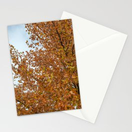 Payson 001 Stationery Cards