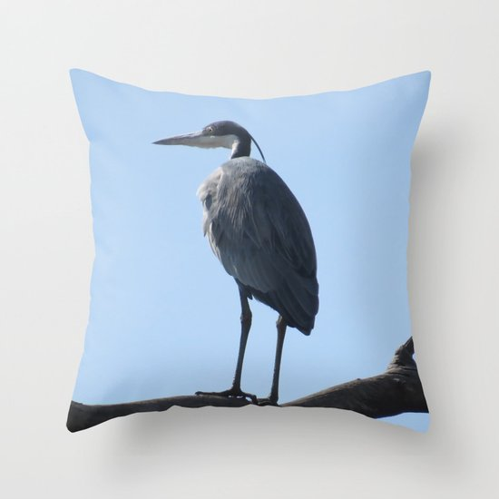 Blue Heron Throw Pillows : Great Blue Heron with a bird s eye view Throw Pillow by Laureenr Society6