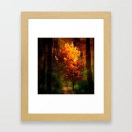 The Autumn Tree Framed Art Print
