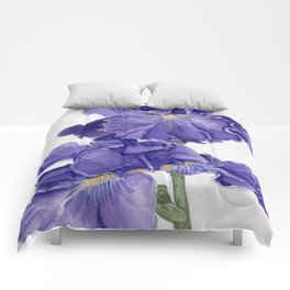 Closer Comforters