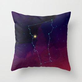 Vermont Constellation Throw Pillow