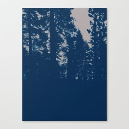 endless dusk Canvas Print