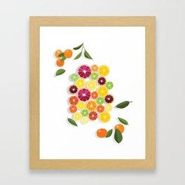 Citrus Assortment Framed Art Print
