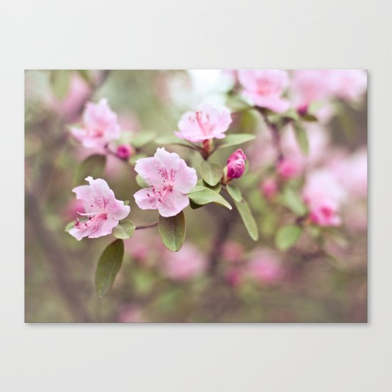 let your heart blossom Canvas Print