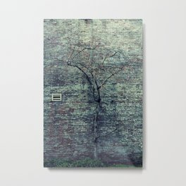 .alonelyurbantree Metal Print
