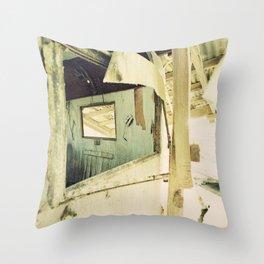 Salton Sea Frames Throw Pillow