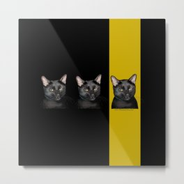 Three Black Cats with Black and Yellow Background Metal Print