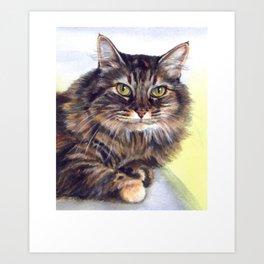 Maine Coon T Shirt - Maine Coon Cat Gift Art Print