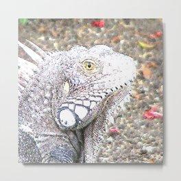 CArt Iguana Metal Print