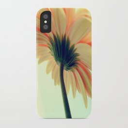 Flower in the spring iPhone Case