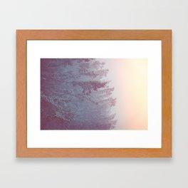 Forest Fog - Snowy Mountain Trees at Sunset Framed Art Print