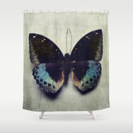 Vintage Butterfly 4 Shower Curtain