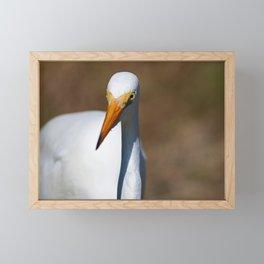 The Enthusiast Framed Mini Art Print