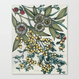 Australian Native Floral Canvas Print