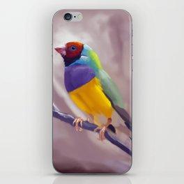 Gouldian Finch iPhone Skin