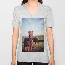 Dartmoor Pony Portrait (2) Unisex V-Neck