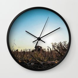Fallow field in the Lomellina countryside at sunset full of yellow flowers Wall Clock
