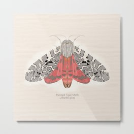 Painted Tiger Moth Metal Print