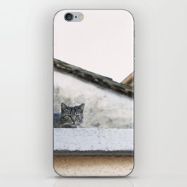Cat on the Roof iPhone Skin