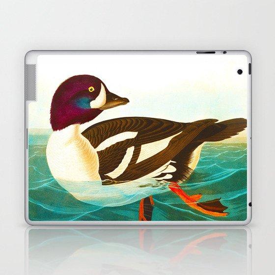 Goldeneye Duck Laptop & iPad Skin