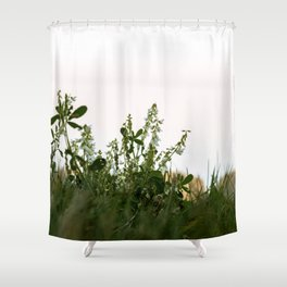 2017-09-22 Shower Curtain