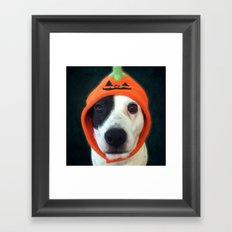 Pumpkin Dog Framed Art Print