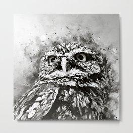 owl portrait 5 wsbw Metal Print