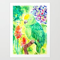 Sleepy Parrot || Watercolor Painting Art Print