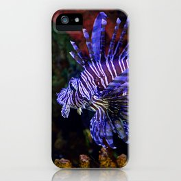 Pterois iPhone Case