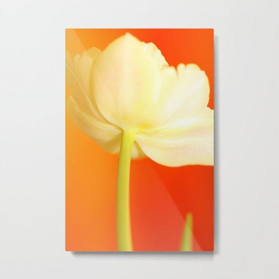 Tulip Romance Metal Print