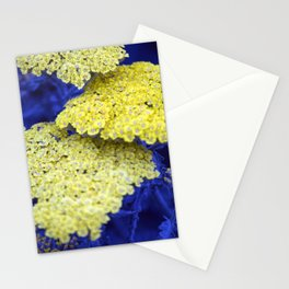 Longwood Gardens - Spring Series 129 Stationery Cards