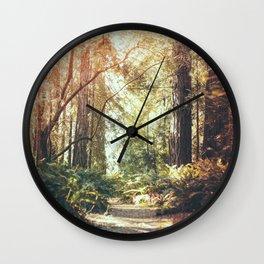 Beautiful California Redwoods Wall Clock