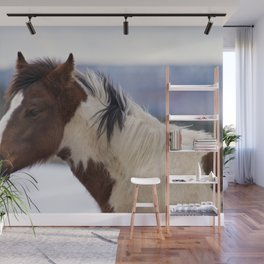 Tri-Colored Horse Wall Mural
