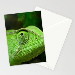 Green chameleon Stationery Cards