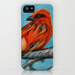 Unknown Finch Study--Animal Art Prints iPhone Case