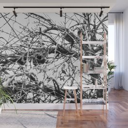 Winter Pomegranate Wall Mural