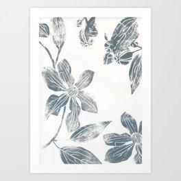 Silver clematis Art Print