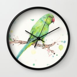 Rose Ringed Parakeet Wall Clock