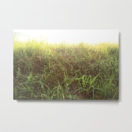 Grassy Metal Print