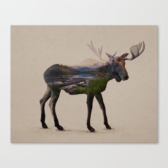 The Alaskan Bull Moose Canvas Print
