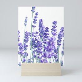 Fresh Lavender #1 #decor #art #society6 Mini Art Print