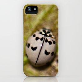 Olla v-nigrum iPhone Case