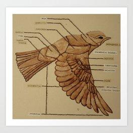 Wing Bird 4 Art Print
