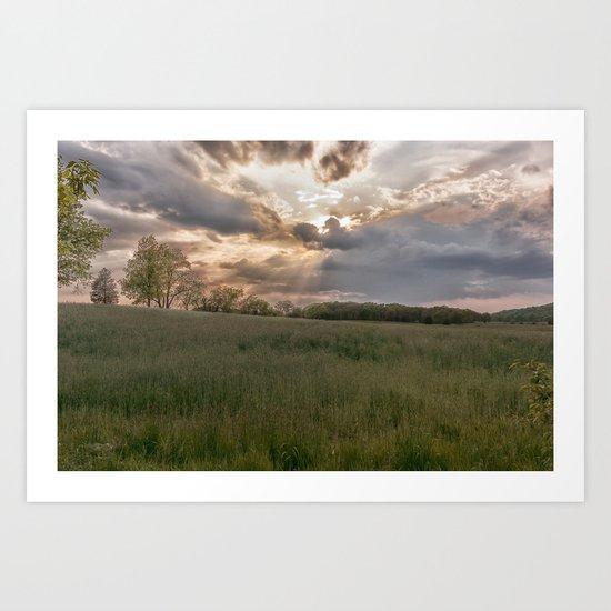 Summer field Art Print