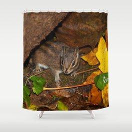 Herbert Shower Curtain