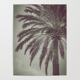 La Palmera Poster