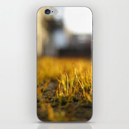 Brooklyn Moss iPhone & iPod Skin