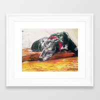 greyhound Framed Art Prints featuring Greyhound  by MaryBoots Newman