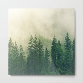 Forest and Fog 02 Metal Print