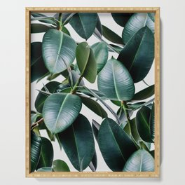 Tropical Elastica Serving Tray